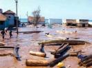 Zerstörung durch den Tsunami_5